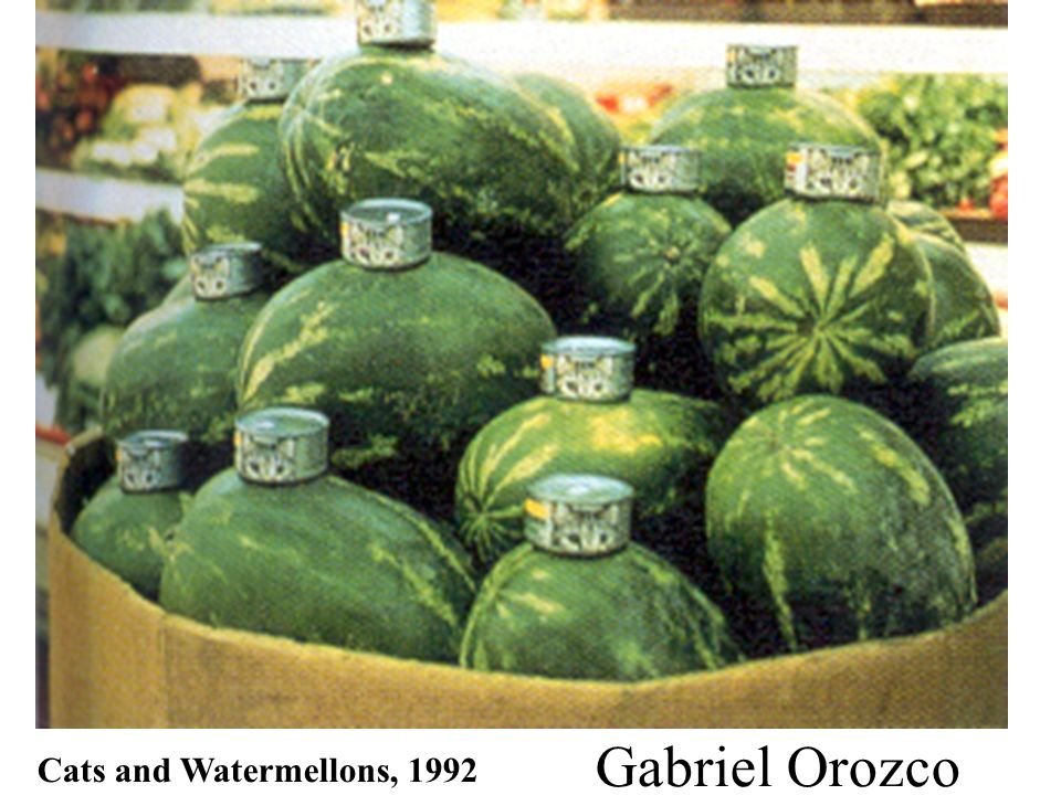 Gabriel Orozco Cats and Watermellons, 1992