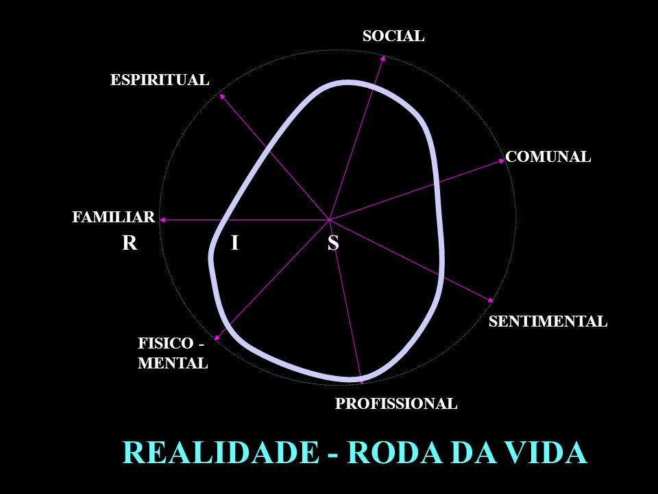 REALIDADE - RODA DA VIDA