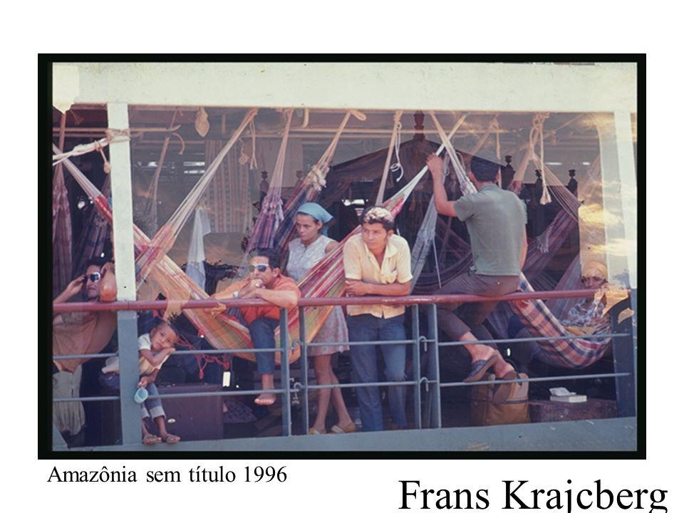 Frans Krajcberg Amazônia sem título 1996
