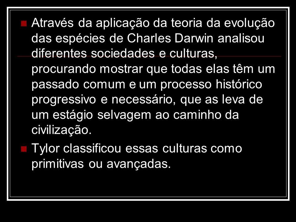 Através da aplicação da teoria da evolução das espécies de Charles Darwin analisou diferentes sociedades e culturas, procurando mostrar que todas elas têm um passado comum e um processo histórico progressivo e necessário, que as leva de um estágio selvagem ao caminho da civilização.