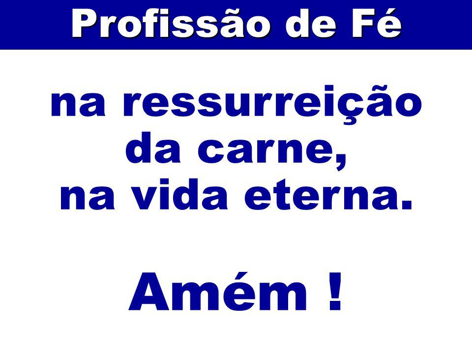 Profissão de Fé na ressurreição da carne, na vida eterna. Amém ! 104
