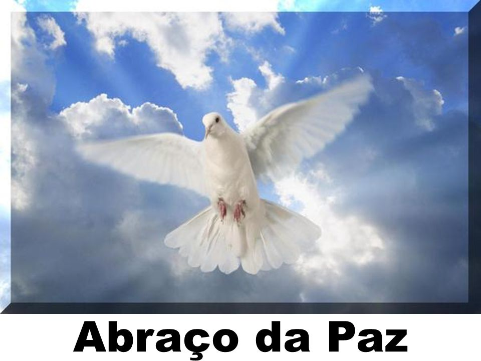 Abraço da Paz 168