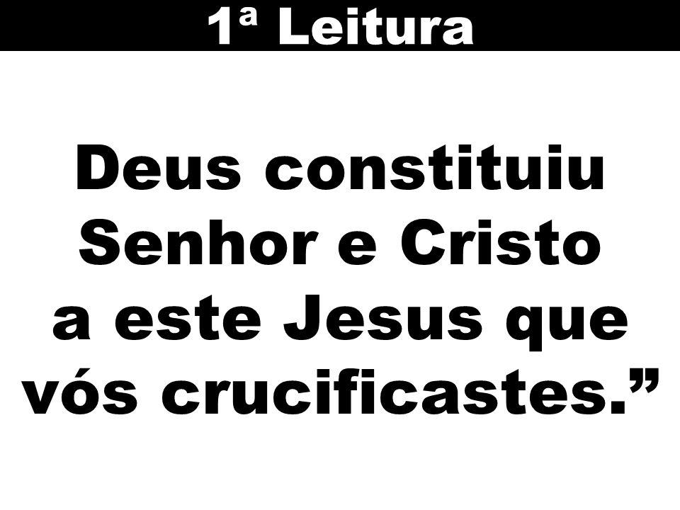Deus constituiu Senhor e Cristo a este Jesus que vós crucificastes.
