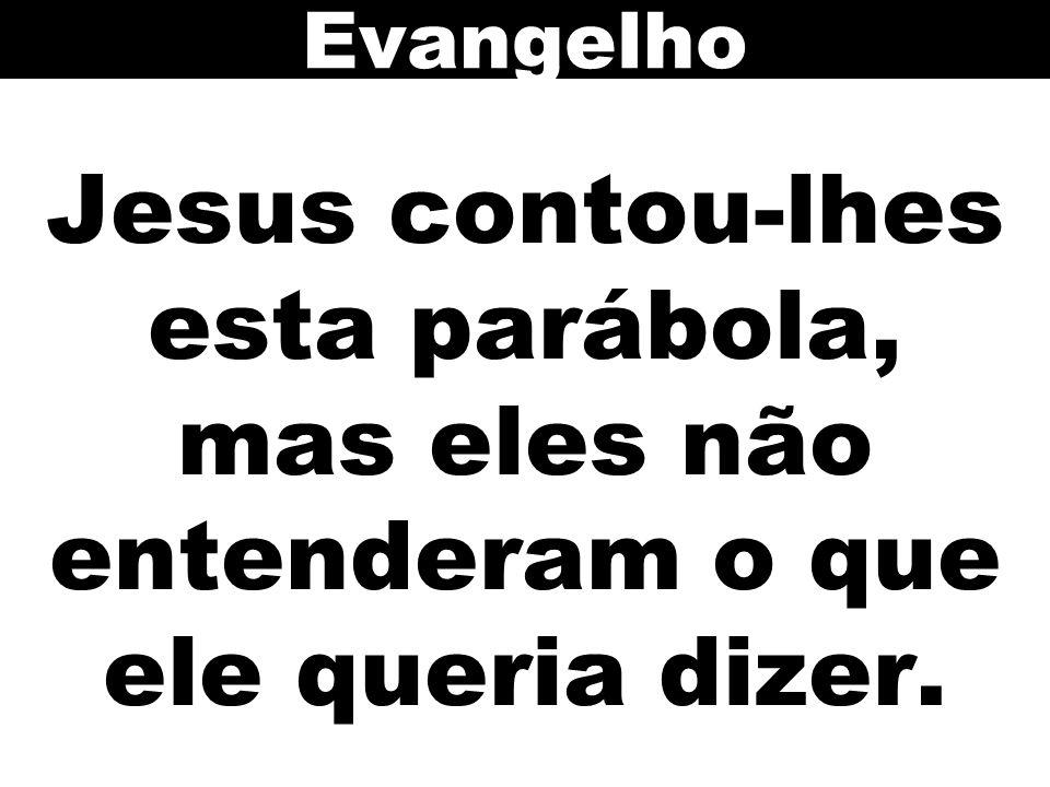 Evangelho Jesus contou-lhes esta parábola, mas eles não entenderam o que ele queria dizer. 84
