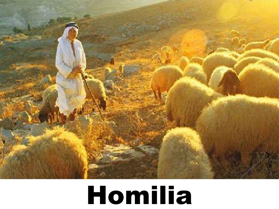 Homilia 93
