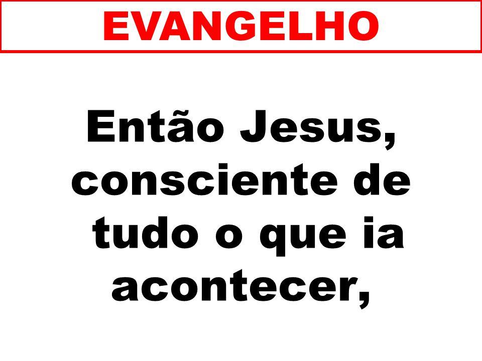 Então Jesus, consciente de tudo o que ia acontecer,