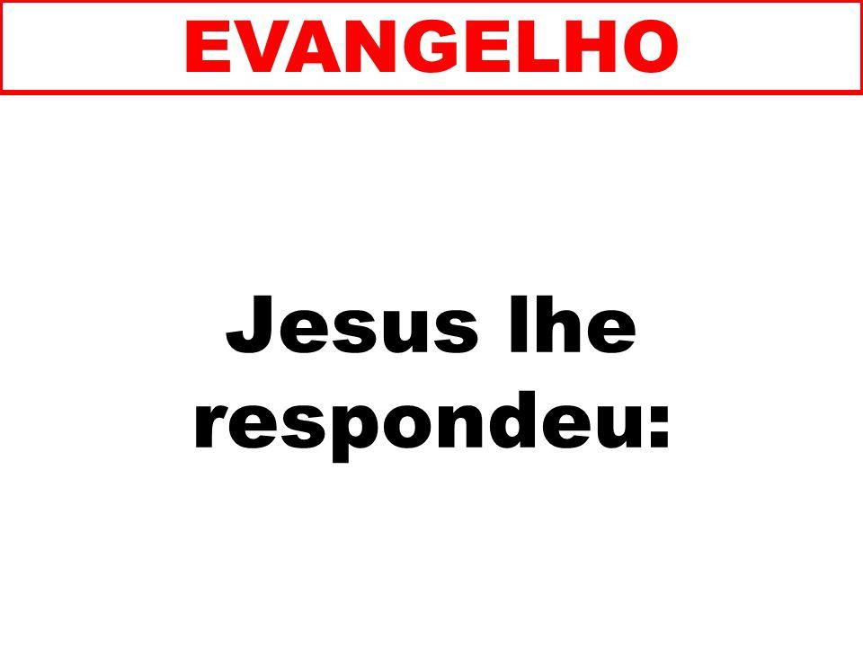 EVANGELHO Jesus lhe respondeu: 135