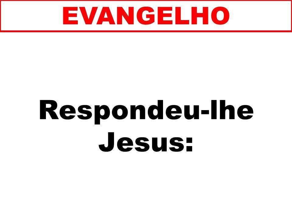 EVANGELHO Respondeu-lhe Jesus: 141