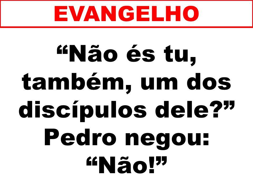 Não és tu, também, um dos discípulos dele Pedro negou: Não!