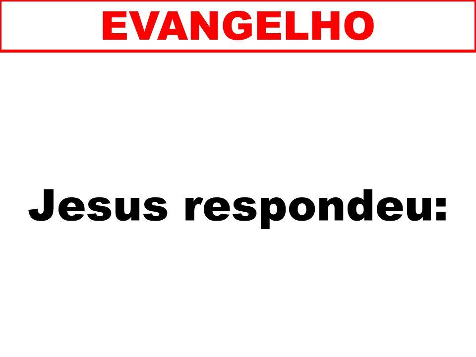EVANGELHO Jesus respondeu: 161