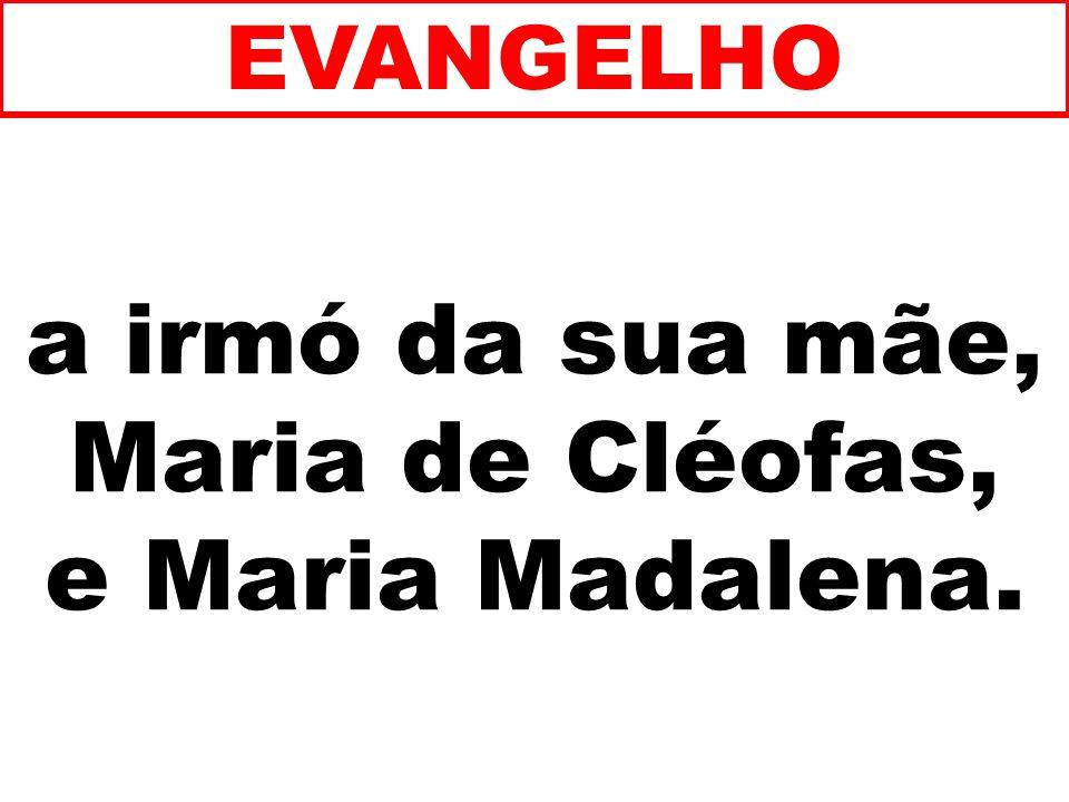 a irmó da sua mãe, Maria de Cléofas, e Maria Madalena.