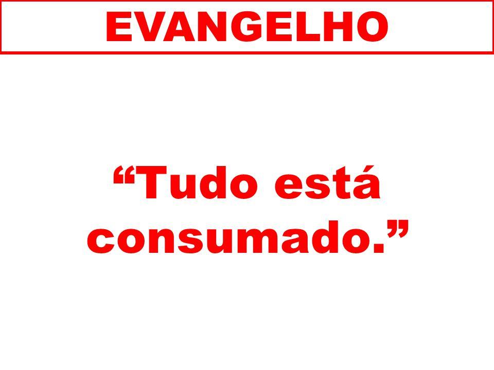 EVANGELHO Tudo está consumado. 246