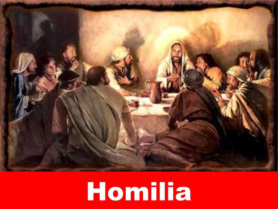 Homilia 273