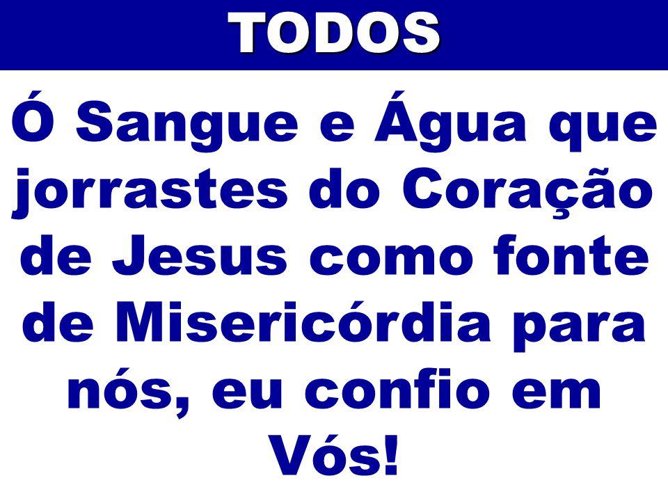 TODOS Ó Sangue e Água que jorrastes do Coração de Jesus como fonte de Misericórdia para nós, eu confio em Vós!