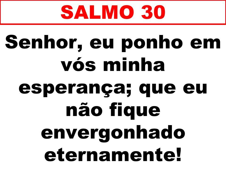 SALMO 30 Senhor, eu ponho em vós minha esperança; que eu não fique envergonhado eternamente! 63
