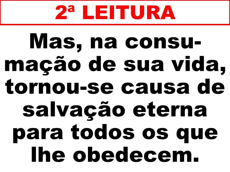 2ª LEITURA Mas, na consu-mação de sua vida, tornou-se causa de salvação eterna para todos os que lhe obedecem.