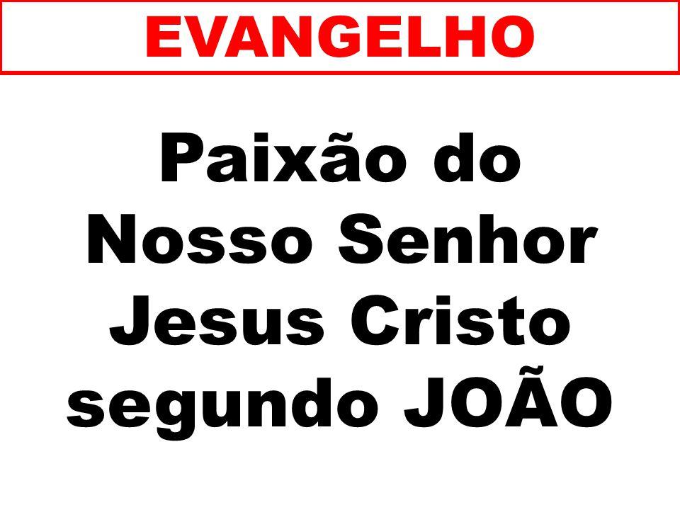 Nosso Senhor Jesus Cristo segundo JOÃO