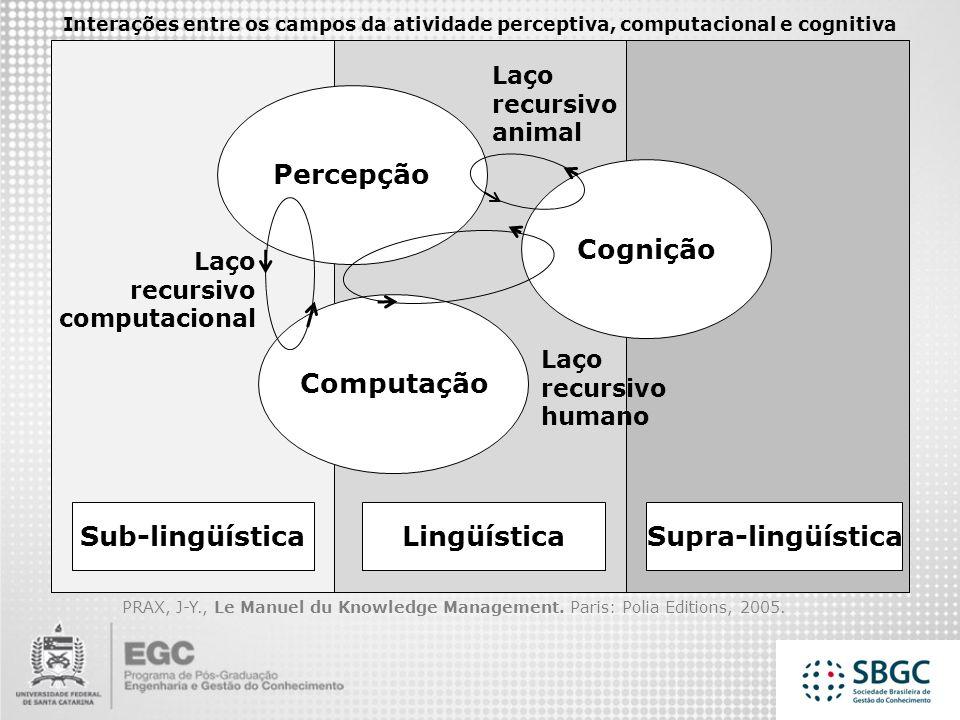 Percepção Cognição Computação Sub-lingüística Lingüística