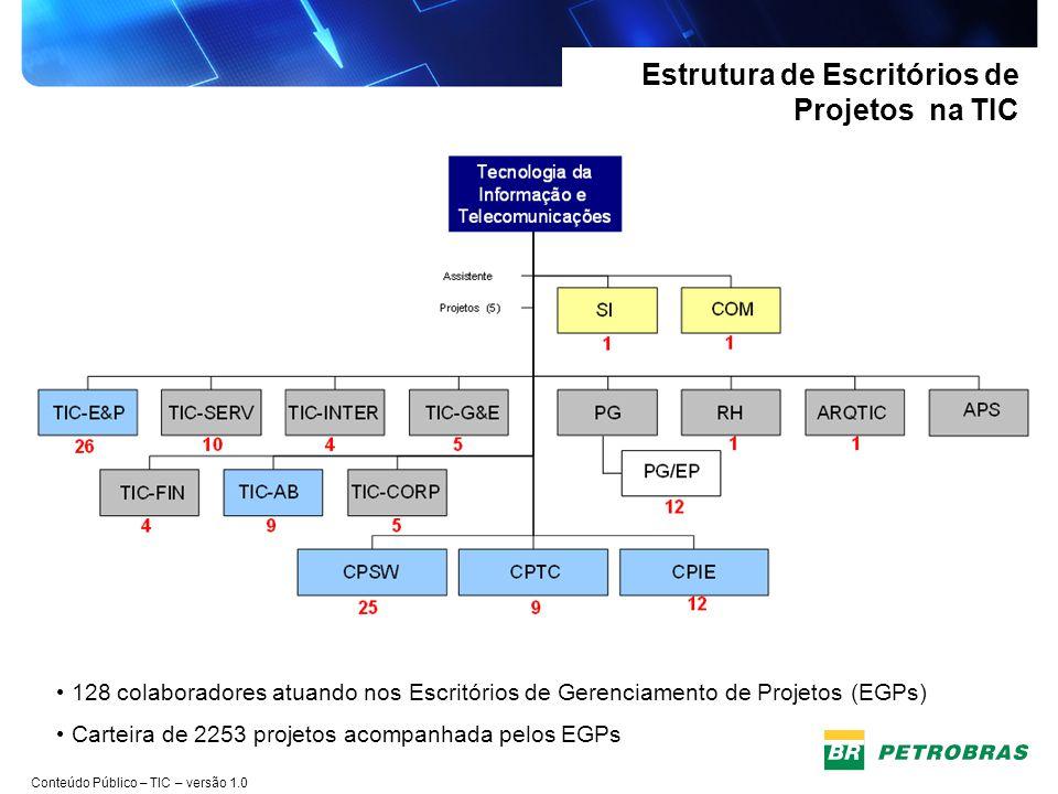 Estrutura de Escritórios de Projetos na TIC