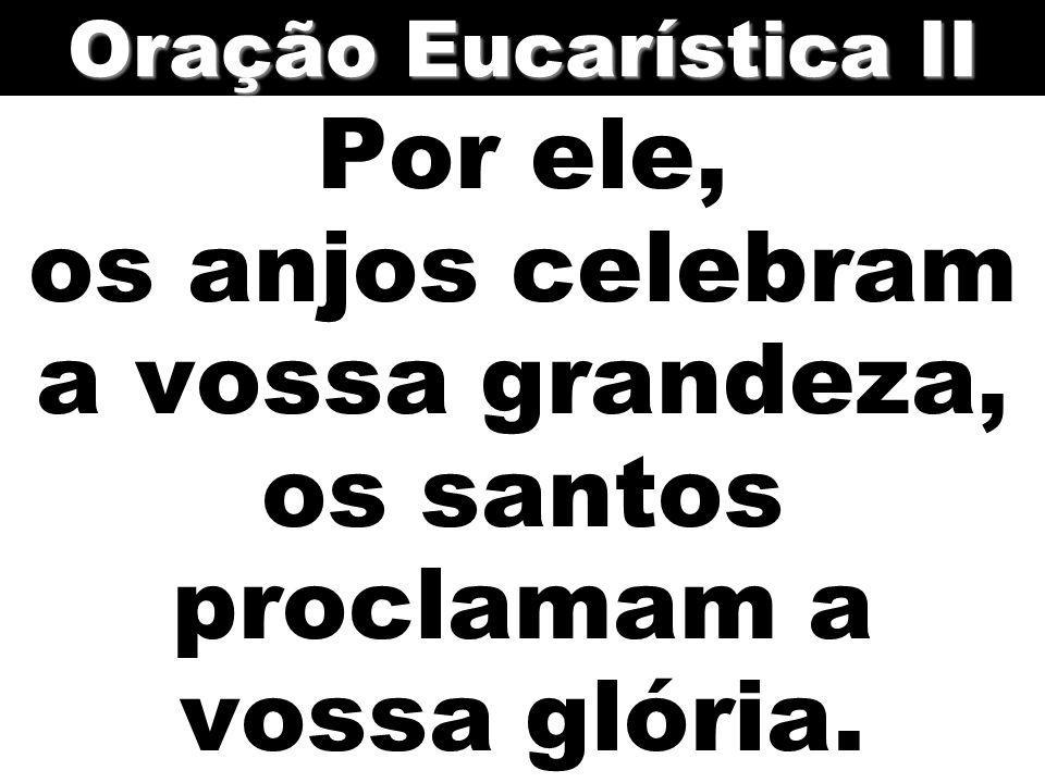 Oração Eucarística II Por ele, os anjos celebram a vossa grandeza, os santos proclamam a vossa glória.