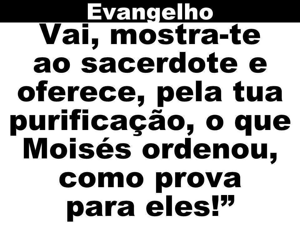 Evangelho Vai, mostra-te ao sacerdote e oferece, pela tua purificação, o que Moisés ordenou, como prova para eles!