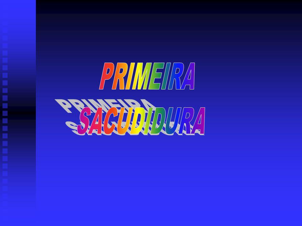 PRIMEIRA SACUDIDURA