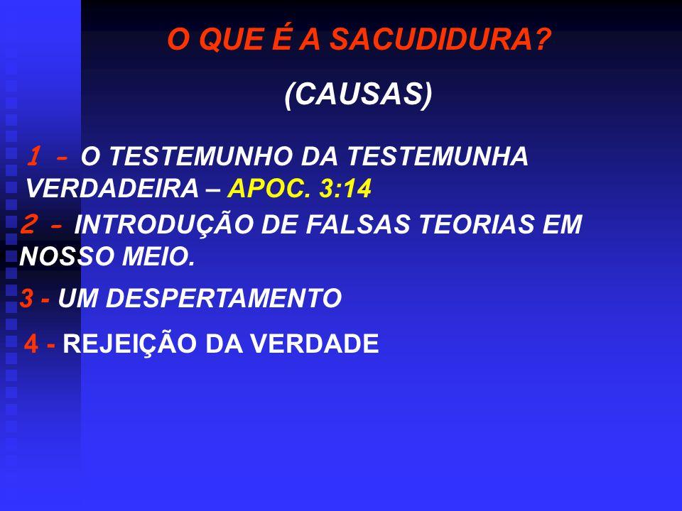 O QUE É A SACUDIDURA (CAUSAS)