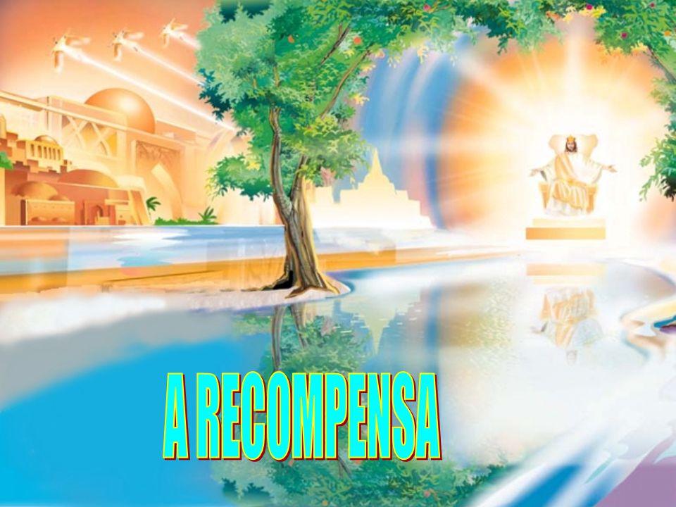 A RECOMPENSA