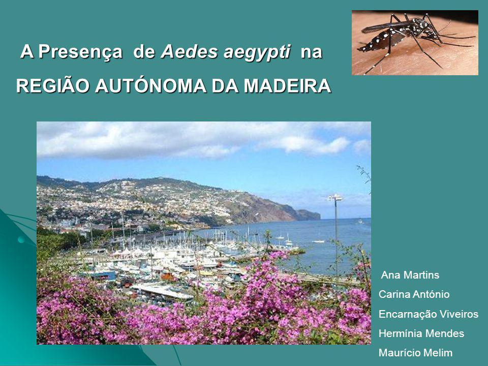 REGIÃO AUTÓNOMA DA MADEIRA