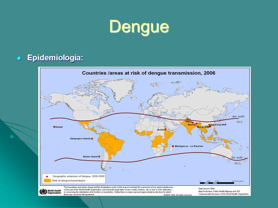Dengue Epidemiologia: