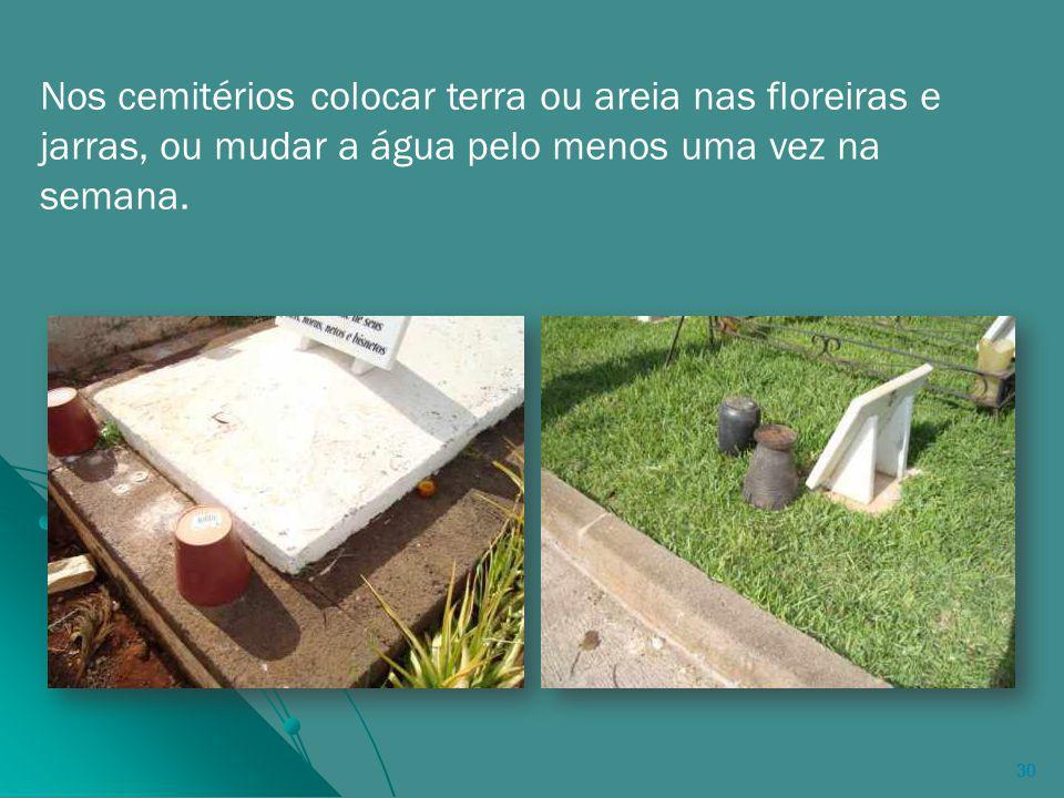 Nos cemitérios colocar terra ou areia nas floreiras e jarras, ou mudar a água pelo menos uma vez na semana.