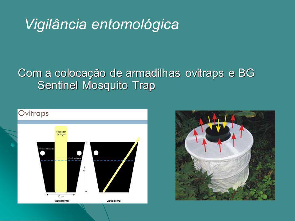 Vigilância entomológica