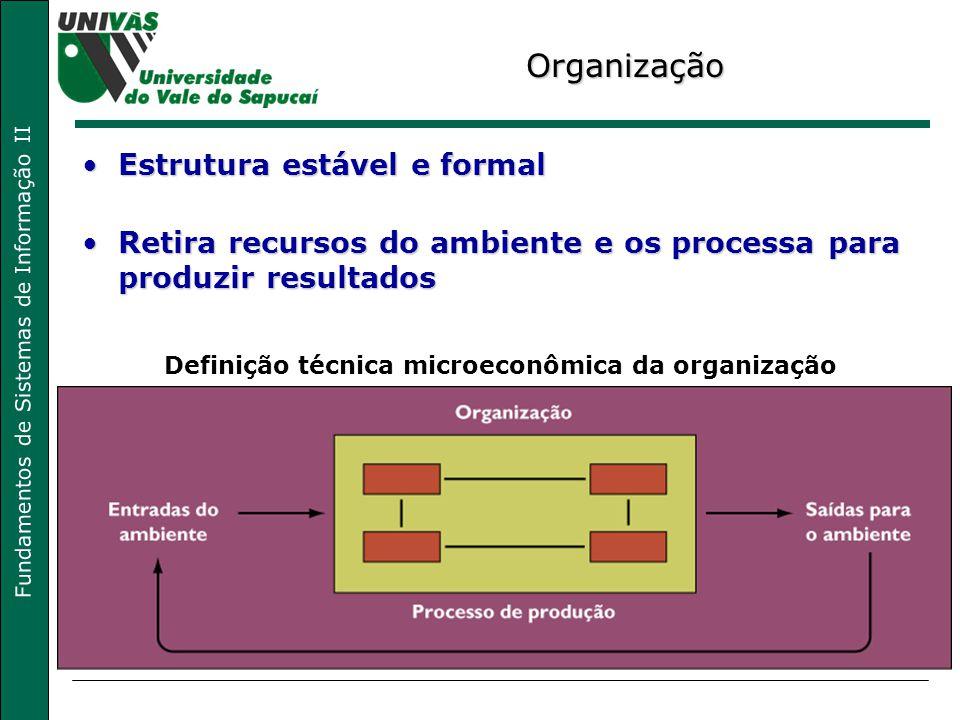 Definição técnica microeconômica da organização