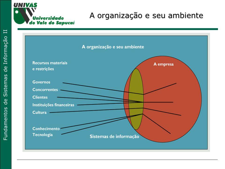 A organização e seu ambiente