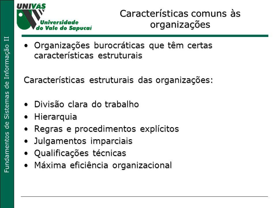 Características comuns às organizações