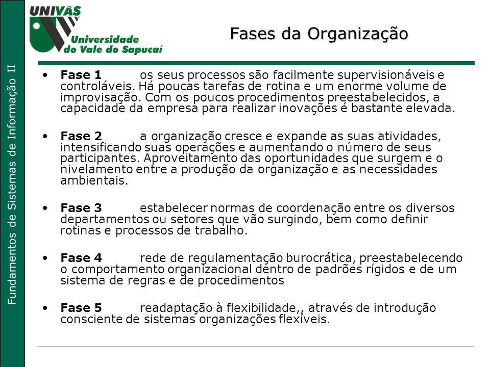 Fases da Organização