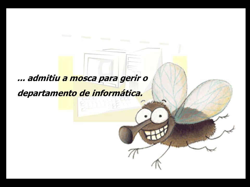 ... admitiu a mosca para gerir o departamento de informática.