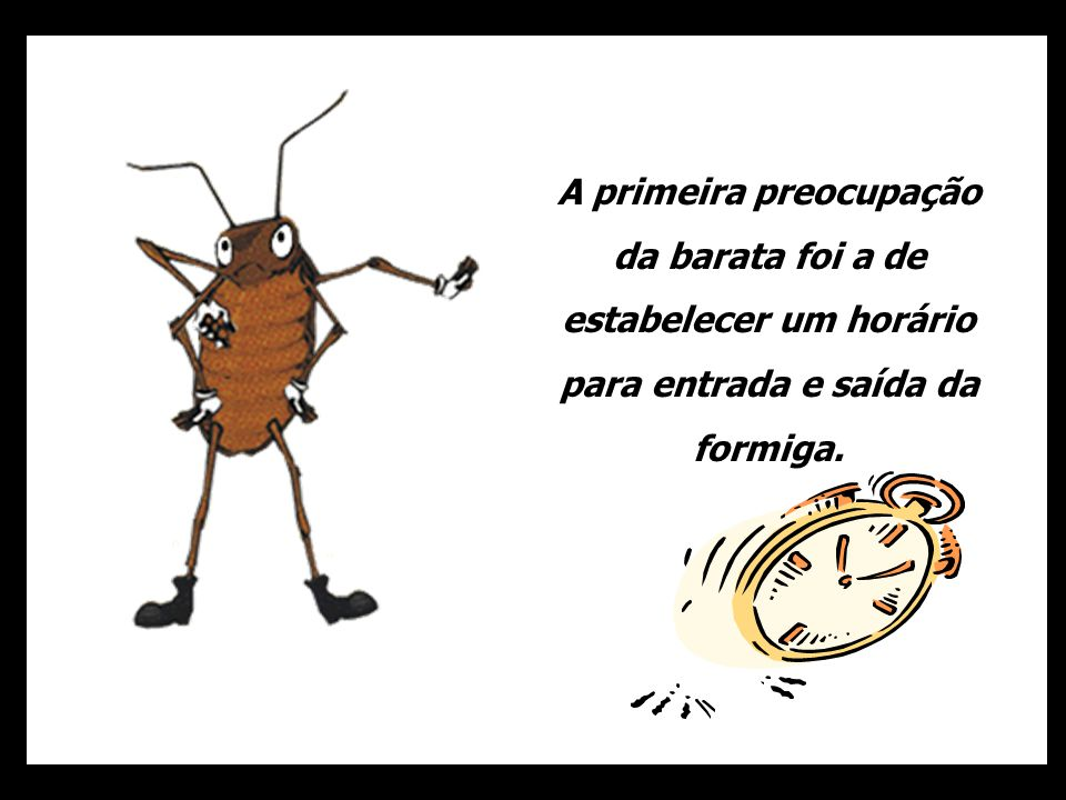 A primeira preocupação da barata foi a de estabelecer um horário para entrada e saída da formiga.