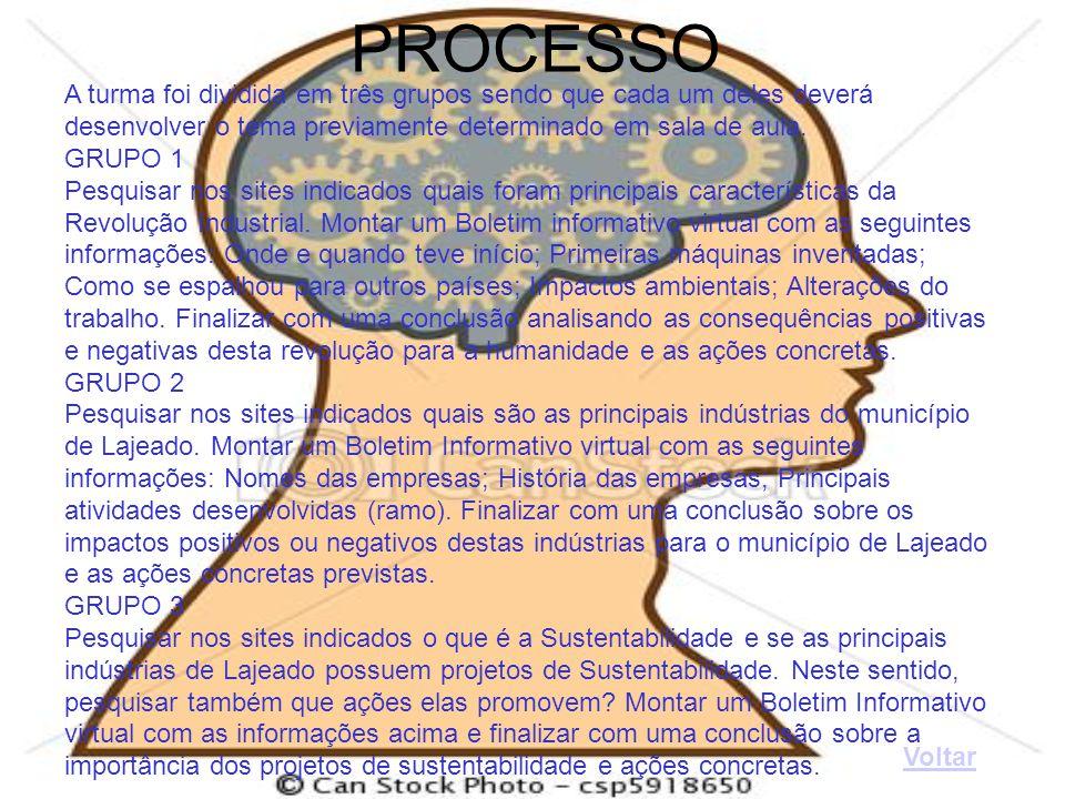 PROCESSO A turma foi dividida em três grupos sendo que cada um deles deverá. desenvolver o tema previamente determinado em sala de aula.