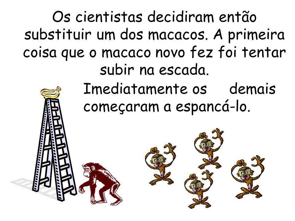 Os cientistas decidiram então substituir um dos macacos