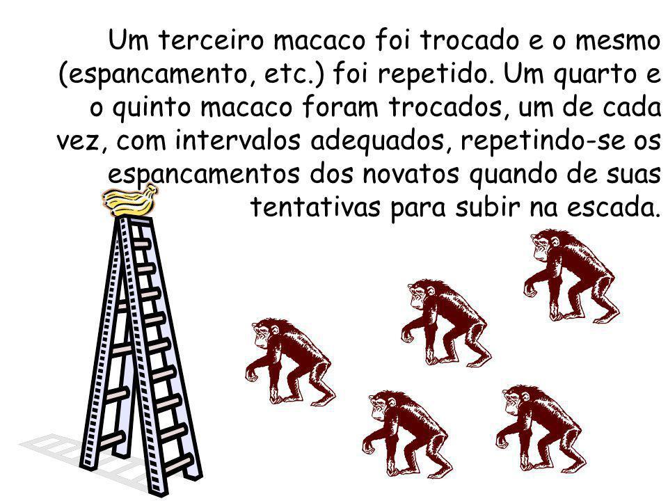 Um terceiro macaco foi trocado e o mesmo (espancamento, etc
