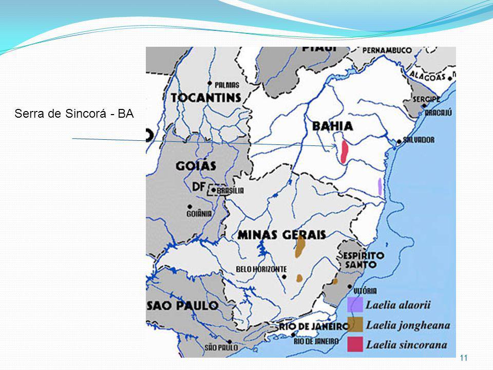 Serra de Sincorá - BA