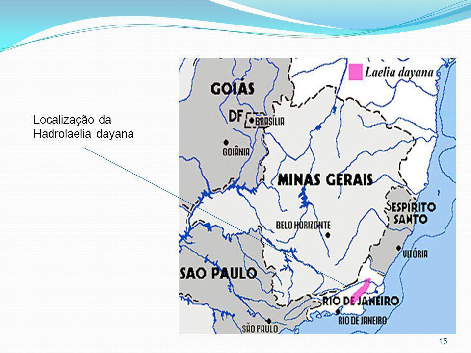 Localização da Hadrolaelia dayana