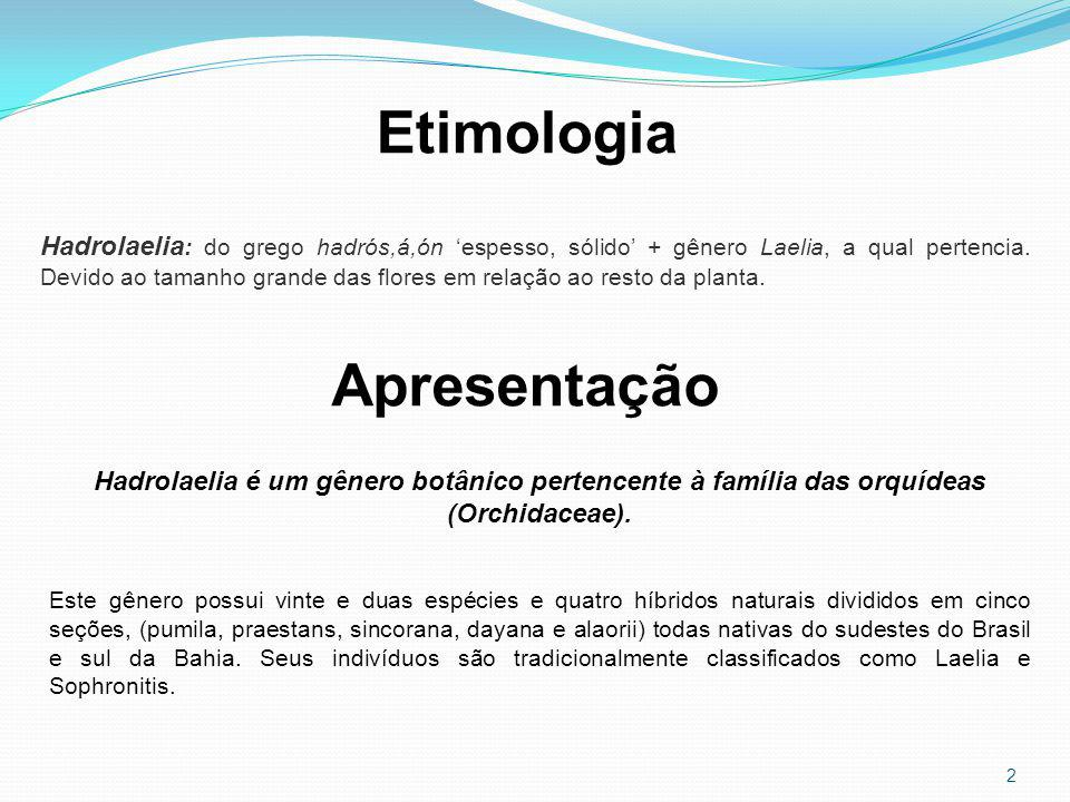 Etimologia Apresentação
