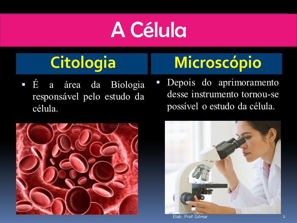 A Célula Citologia Microscópio