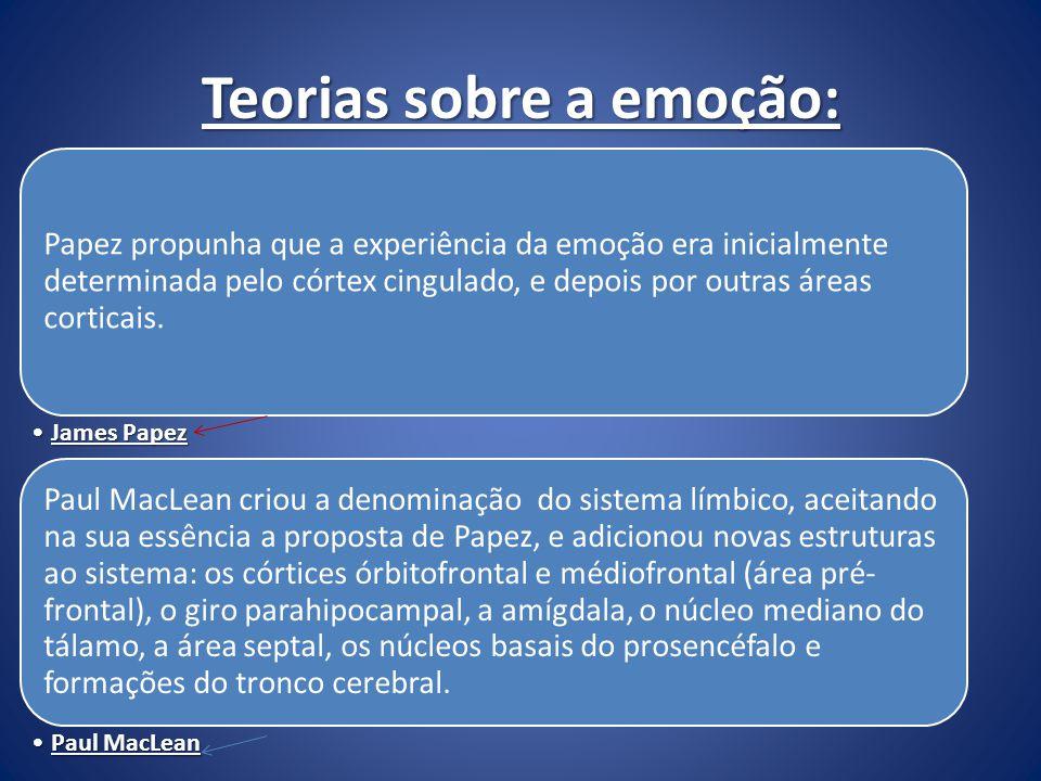 Teorias sobre a emoção: