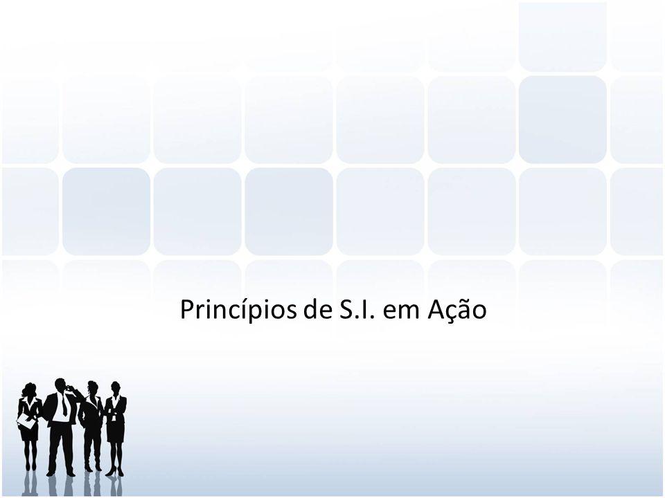 Princípios de S.I. em Ação