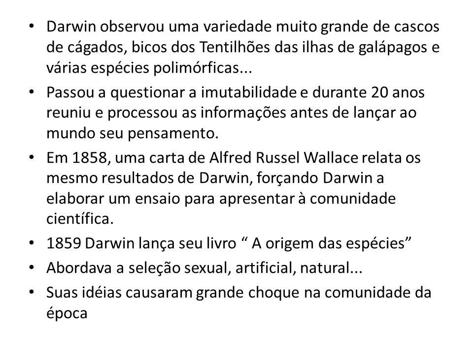 Darwin observou uma variedade muito grande de cascos de cágados, bicos dos Tentilhões das ilhas de galápagos e várias espécies polimórficas...