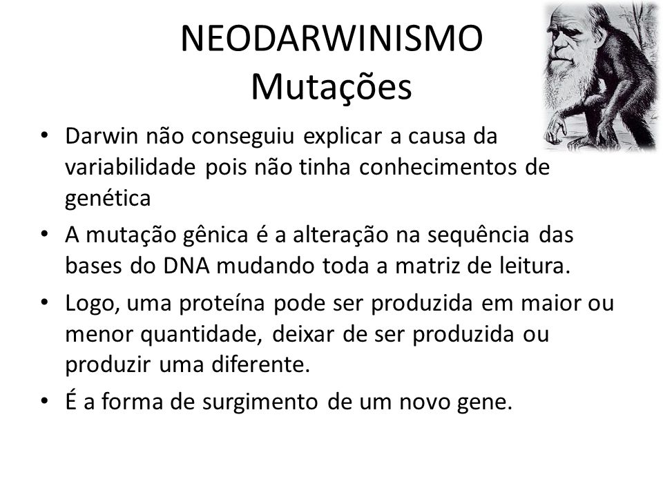 NEODARWINISMO Mutações