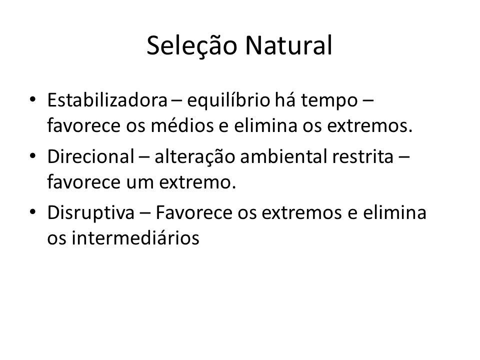 Seleção Natural Estabilizadora – equilíbrio há tempo – favorece os médios e elimina os extremos.